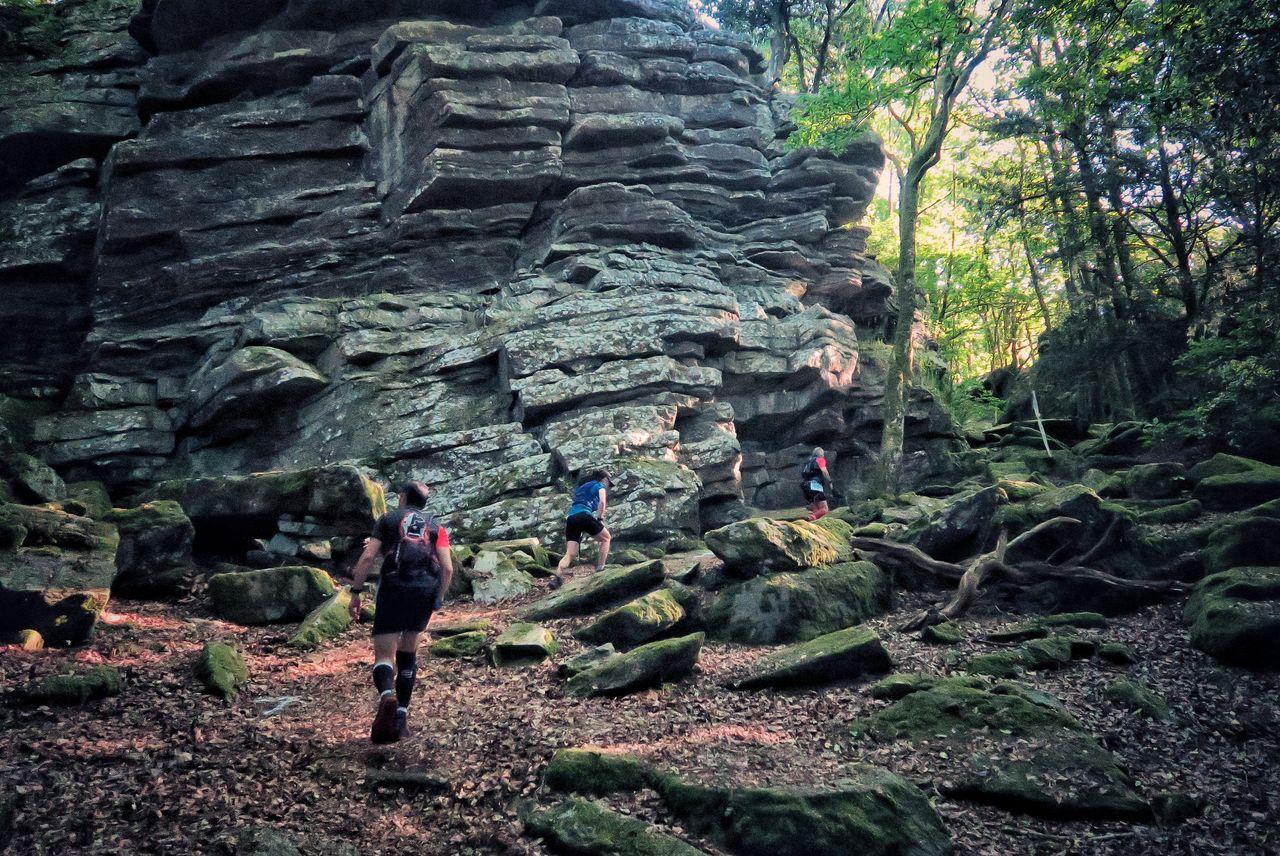 Les rochers de la forêt de Guerlédan